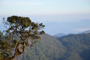 Blick vom Abstieg des Adams Peek.